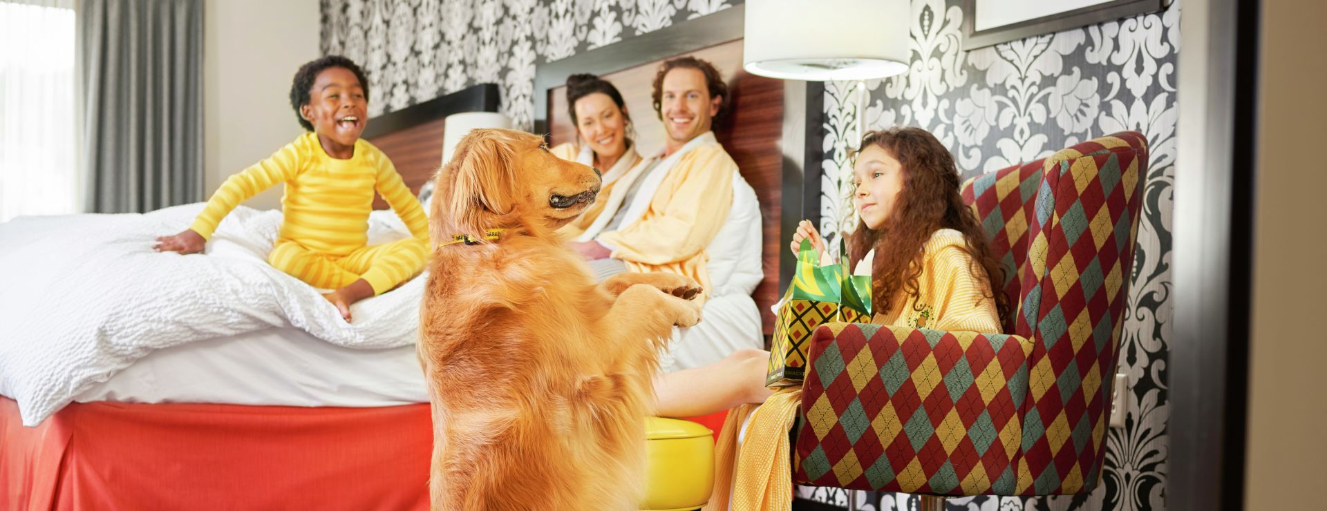 Family in guestroom with dog