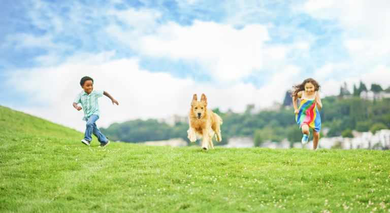 A dog and two children running in grass